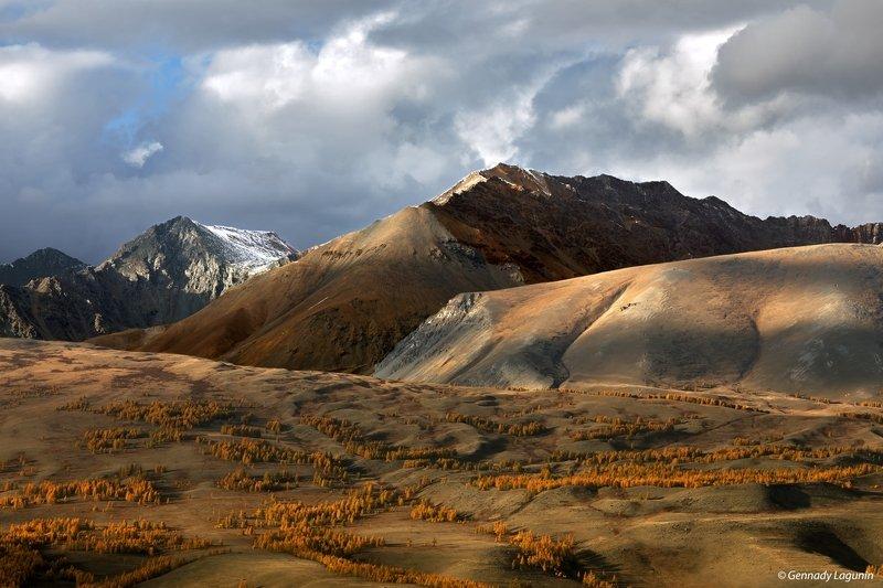 алтай, altai, осень, autumn, горы, mountains Полет во сне и наявуphoto preview