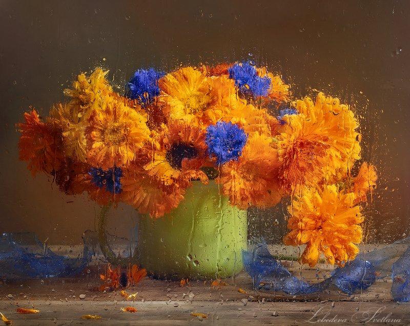 цветы,календула,мокрое стекло С календулой и василькамиphoto preview