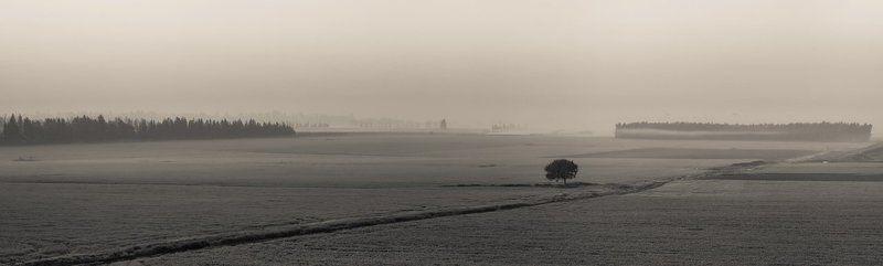 Solitude...photo preview