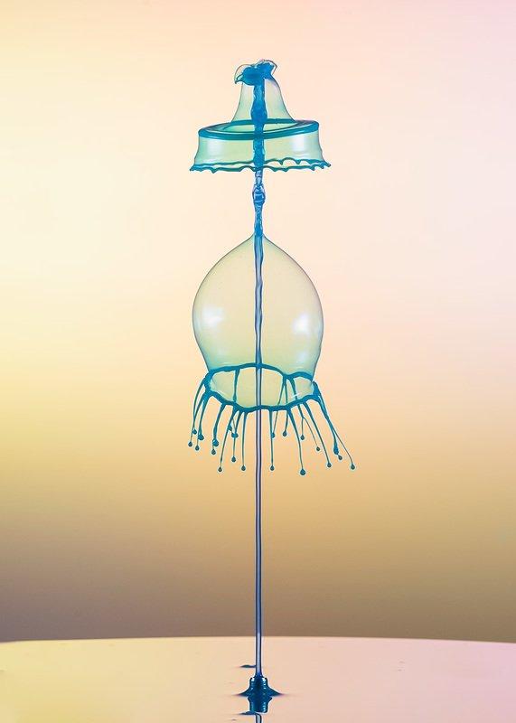 abstract,liquid,art,waterdrop,splash,color,light shot from belowphoto preview