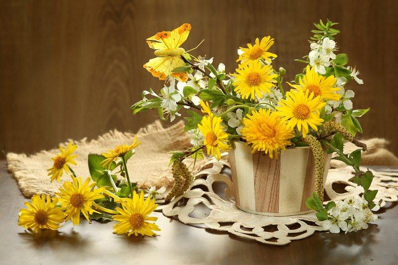 букет, цветы, желтые, ветка вишни Маленькие солнышкиphoto preview