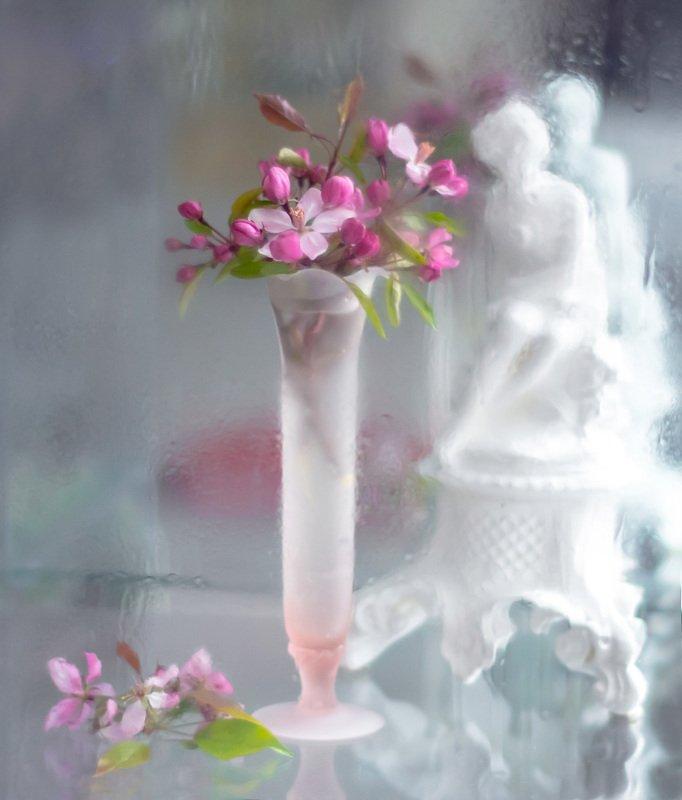 натюрморт,весна,цветы,ваза,неживая природа,бутоны, Утро...photo preview