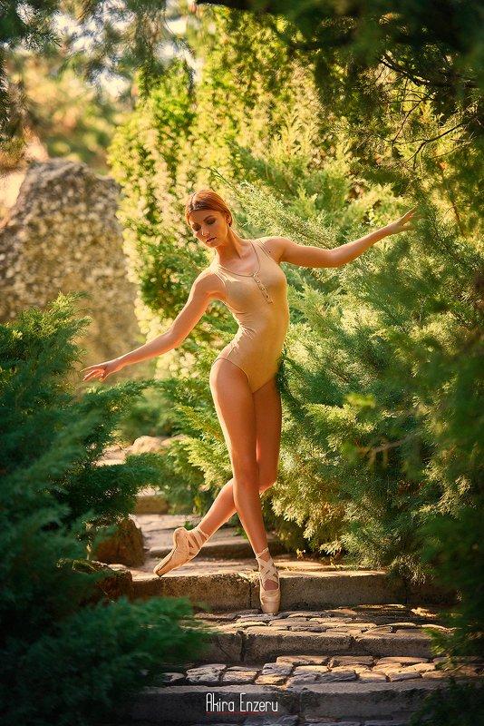 ballet, ballerina, dance Лето IIphoto preview