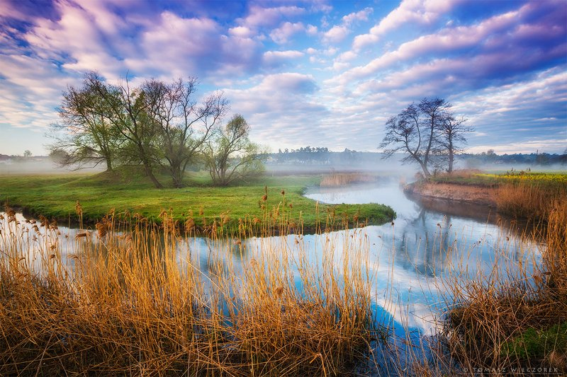 poland, polish, landscape, sunrise, sunset, colours, awesome, amazing, adventure, travel, beautiful, morning, light, river, village, fog, mist, clouds, sky Morning on the riverphoto preview