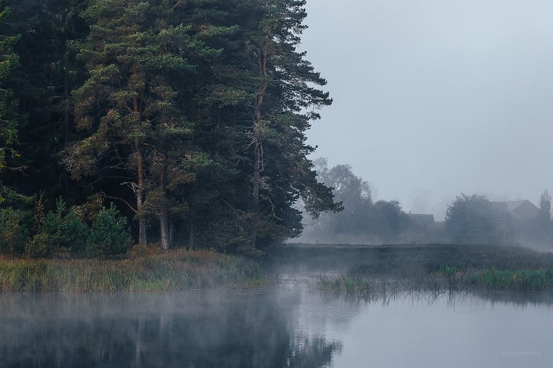 утро туман остров ###photo preview