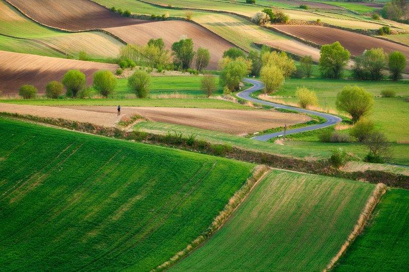 ponidzie, landscape, poland Ponidziephoto preview