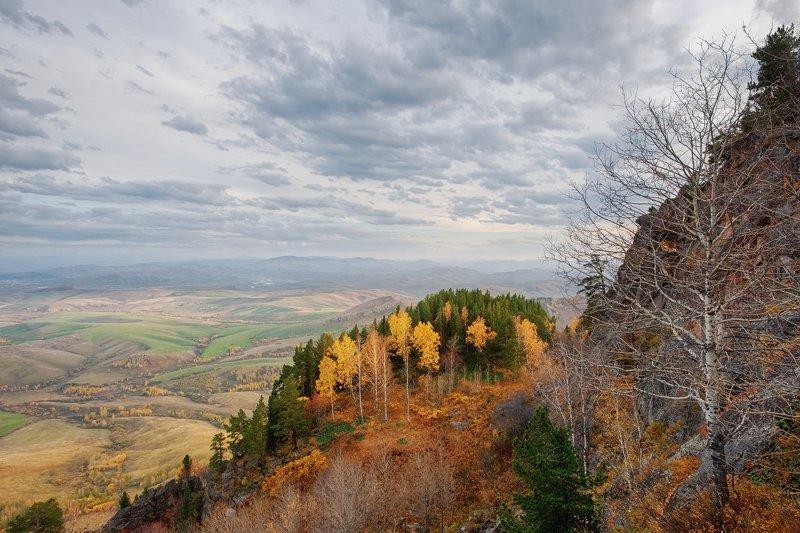 горный, алтай, бабырган Предгорья Алтаяphoto preview