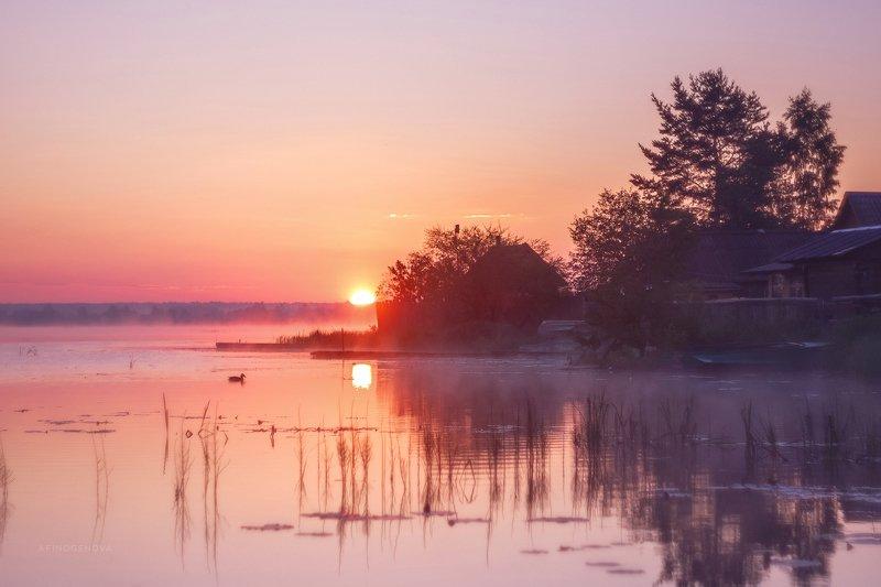 рассвет утро солнце река утка Рассветный часphoto preview