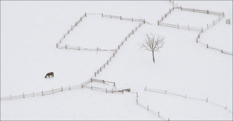 минимализм winter minimaliztphoto preview