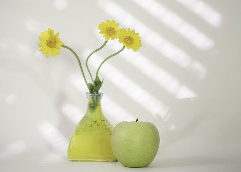 yellow,daisy,stilllife,highkey,flowers yellow daisys.photo preview