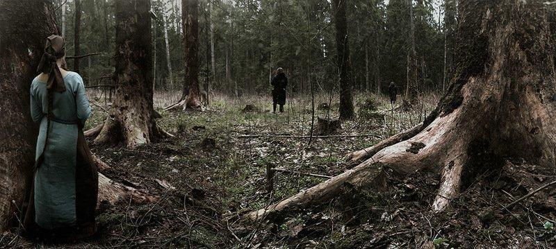Загадки леса...photo preview