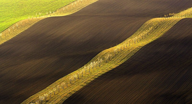 moravian tuscany In the Moravian fieldphoto preview