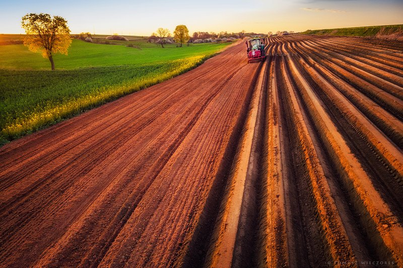 poland, polish, landscape, sunrise, sunset, colours, awesome, amazing, adventure, travel, beautiful, light, field, tractor, tree, work, village, countryside Spring worksphoto preview