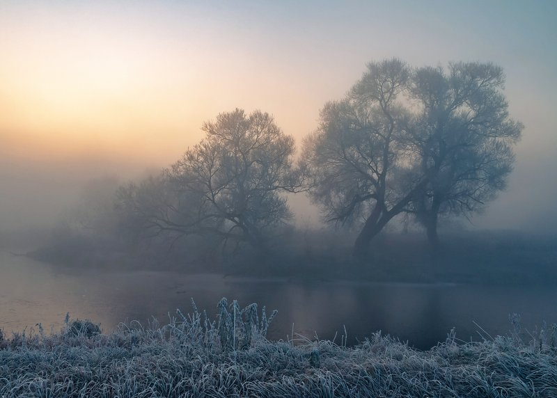 утро, свислочь, туман, иней, пейзаж Сети туманаphoto preview