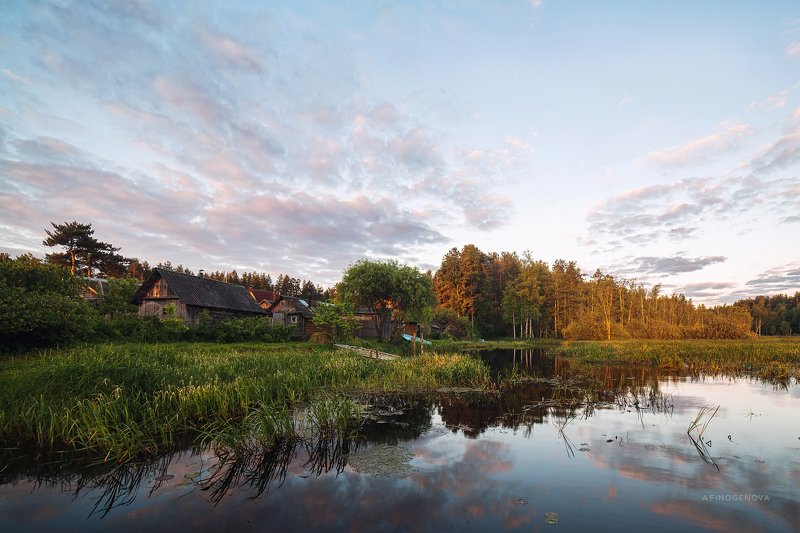 лето утро деревня лес вода отражение Летняя пасторальphoto preview