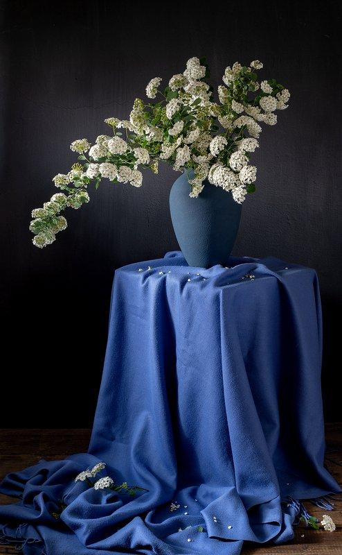 натюрморт, цветы Спиреяphoto preview