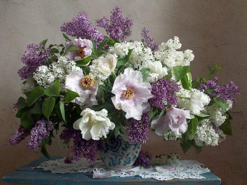 весна, натюрморт, букет цветов, сирень, пионы, марина филатова ***photo preview