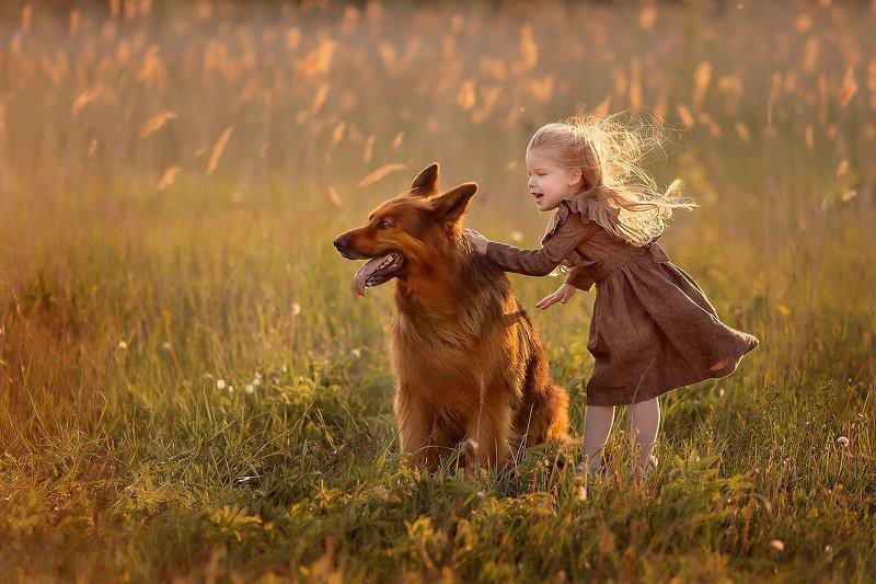 немецкая овчарка девочка ветер закат улыбка радость дружба ***photo preview