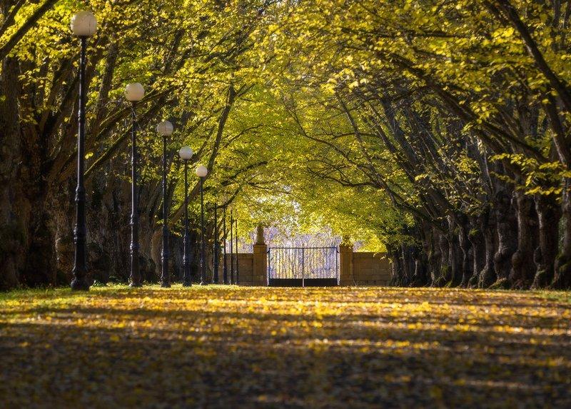 Осенний Тойлу, Эстония. Осенний Тойлу, Эстония.photo preview
