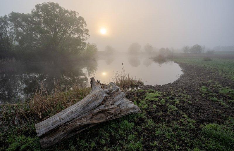майское утро туманноеphoto preview