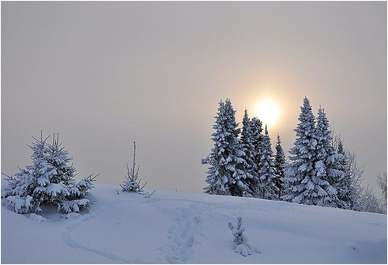 зима,зимний пейзаж,пасмурно,небо,удмуртия,солнце Атмосферная меланхолияphoto preview