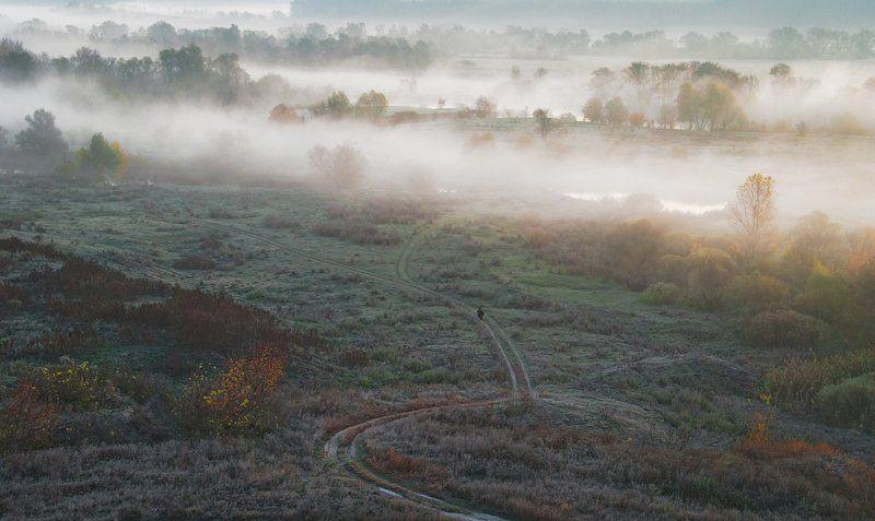 осень, туман, рыбак, рассвет. на рыбалкуphoto preview