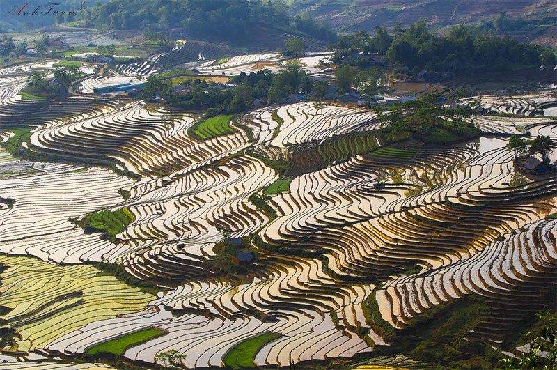 #sellingphoto #landscape Sàng Ma Sáophoto preview