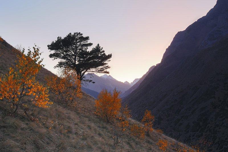 Кавказ, Балкария, утро, горы, ущелье, Булунгу Кавказское утроphoto preview