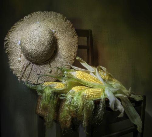 Кукурузка...