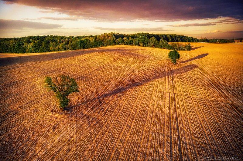 poland, polish, landscape, sunrise, sunset, colours, awesome, amazing, adventure, travel, beautiful, field, spring, tree, shadows Battle of shadowsphoto preview