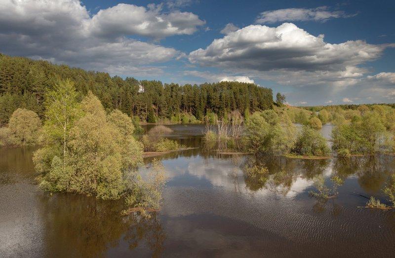 Река вода паводок деревья лес весна облака небо Кама Удмуртия Сильный разлив Камыphoto preview