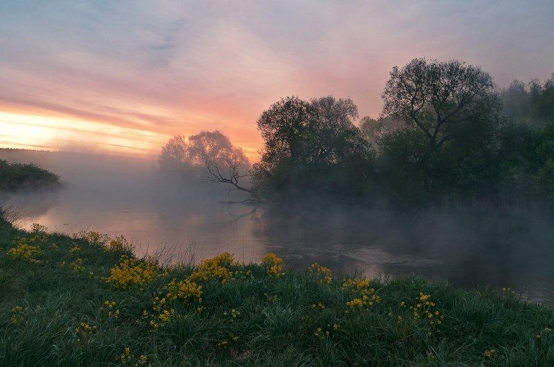 утро, свислочь, туман, весна, пейзаж Майский рассветphoto preview
