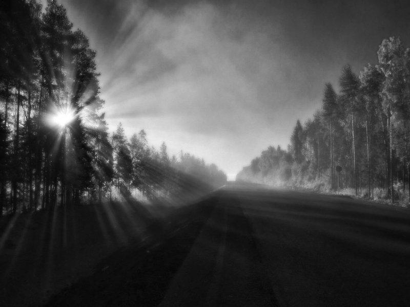 Дорога,солнце и туманphoto preview