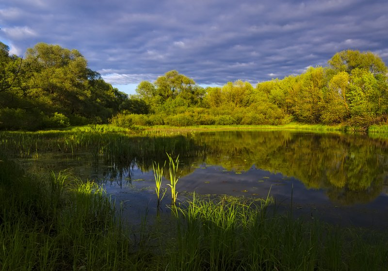 nevant60, пейзаж, красота, природа Вечерний светphoto preview