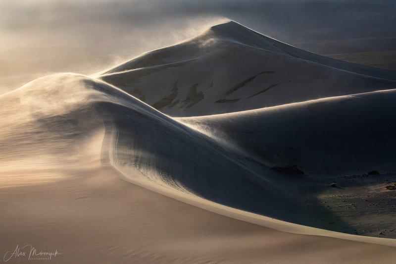 Пустыня, дюны, песок, свет, тень, абстракция, паттерн, узор, фото-тур, США, Америка,  Песчаный Шторм в пустынеphoto preview