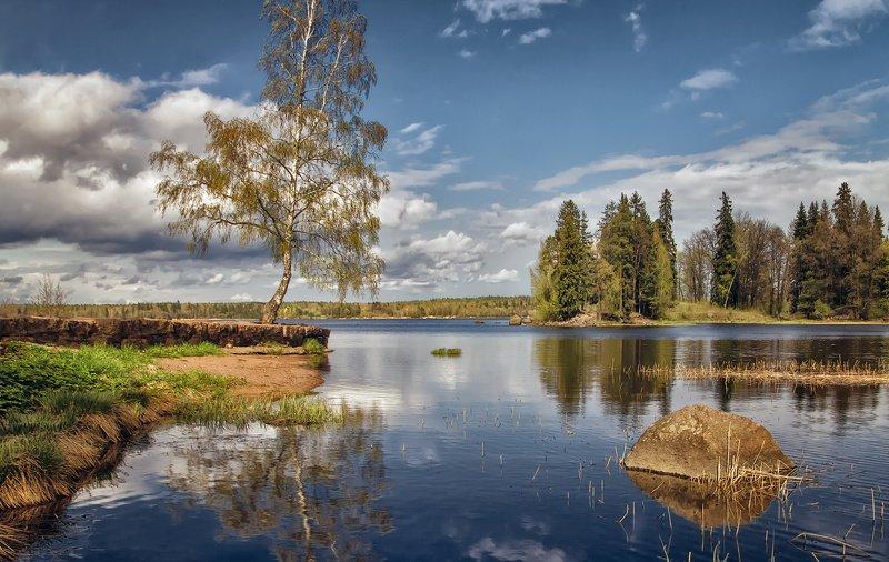 пейзаж,озеро,природа В парке Монрепо.photo preview