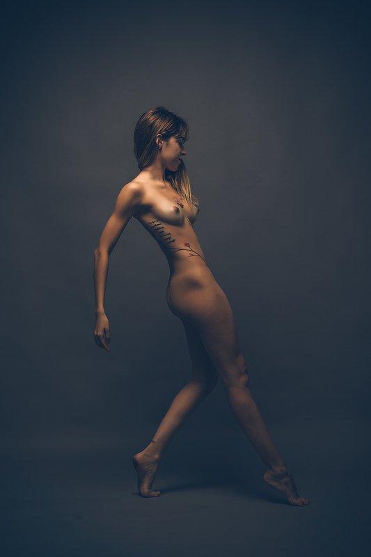 bailarina, dance, dancer, nude, contemporaneo, zabrodski, ivan zabrodski, AmiRe (311)photo preview