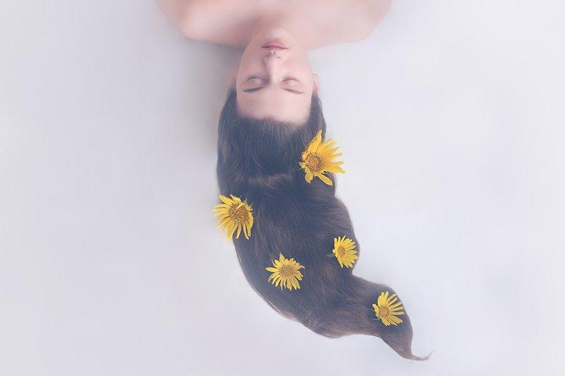 girl, sunflower, hair, sleep, eyes, closedeyes, longhair, yellow Dream of sunflowerphoto preview