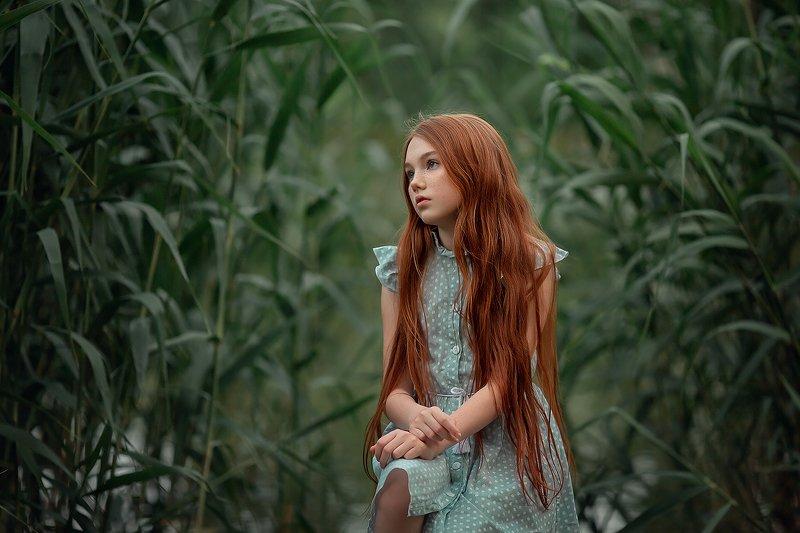 камыши, девочка, портрет, рыжая девочка, рыжие волосы ***photo preview