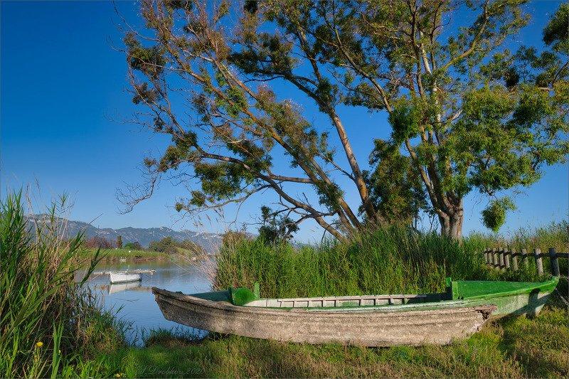озеро, рассвет, дерево, лодка На берегуphoto preview