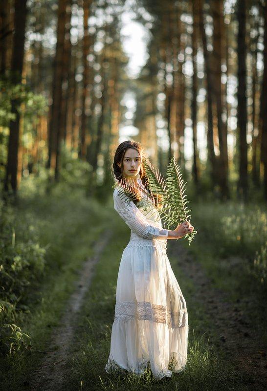 women girl kornelia diva forest trees bokeh forest maiden magic mist лесная дева лесная деваphoto preview