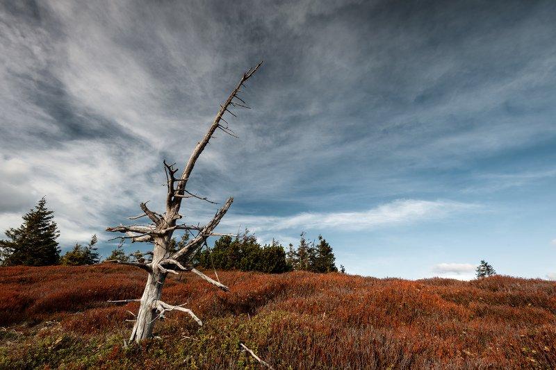 Jeseníky moutains, sky, landscapes, spring Lonerphoto preview