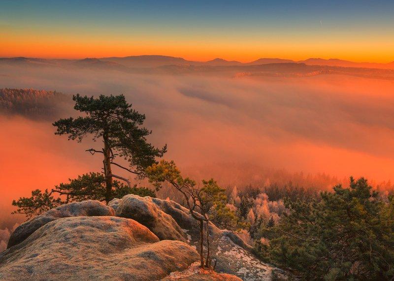 Every Sunrise is a Poem фото превью