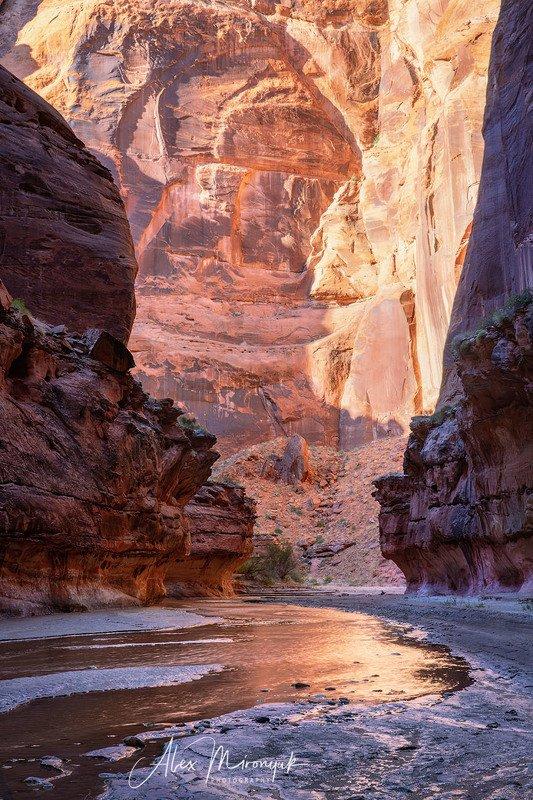 США, Аризона, Юта, каньон, щелевой, слот, пустыня, река, скала, отражение,  Золотой свет в каньонеphoto preview