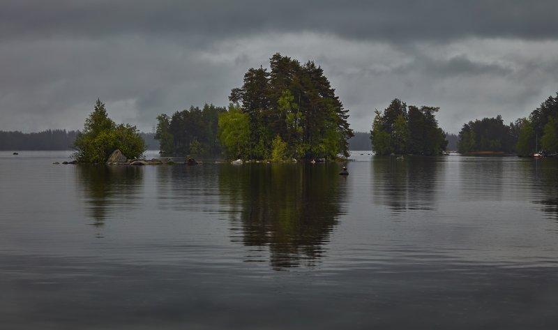 летний дождикphoto preview
