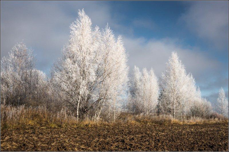 россия, владимирская обл Ноябрь морозныйphoto preview