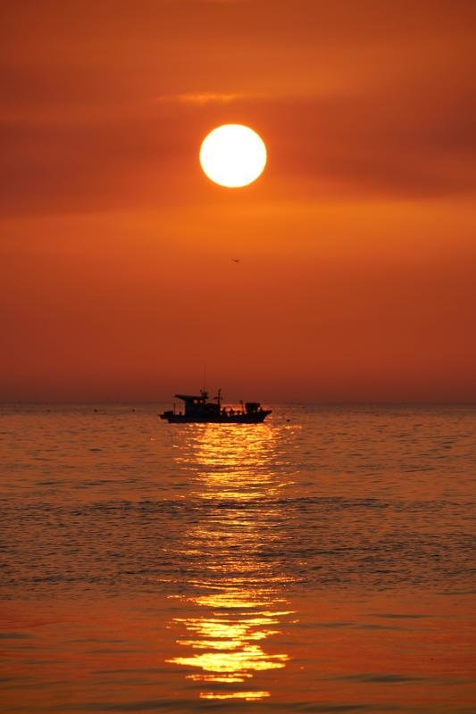 south korea, gyeongsangbukdo,sunrise,morning,sea,seascape,horizontal,sunlight,clouds, silhouette, fishing boat,seagull,pohang Sun, Seagull, Fishing boatphoto preview