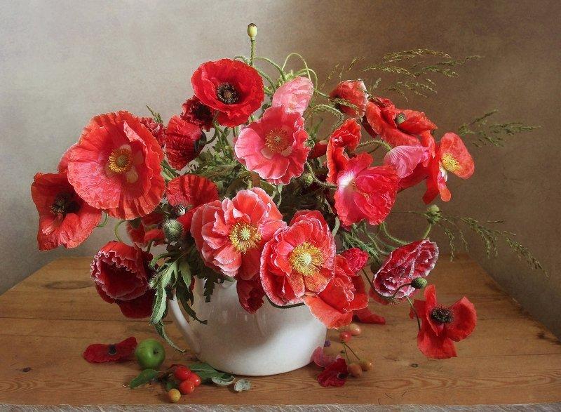 лето,  цветы, натюрморт, марина филатова, маки Макиphoto preview