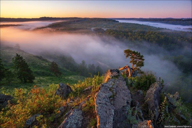 сибирь, салаирский кряж ,рассвет, июнь, аня графова Сибирь, пробуждение нового дня .. )photo preview