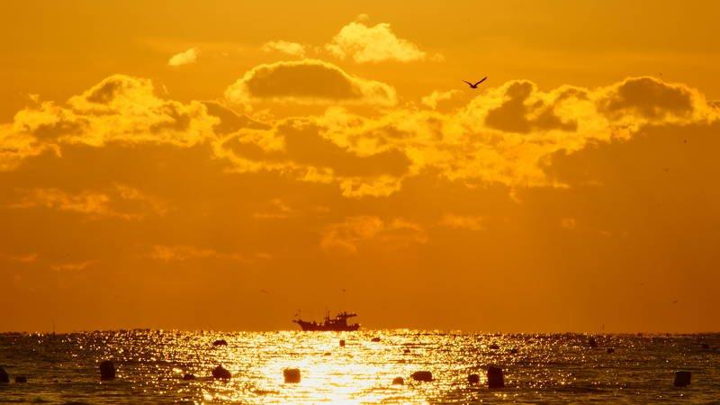 south korea, ulsan, sea, seascape, sunrise, sunlight, boat, sun, clouds, seagull, horizontal, sunshine, Under the sunshinephoto preview